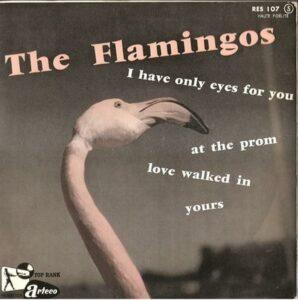 the flamingos